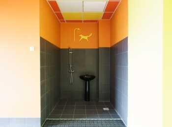 Место для мытья лап домашним животным